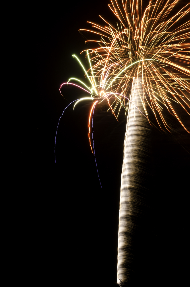 Two bursts of fireworks together, like a palm tree and a huge spider